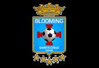Логотип ФК «Блуминг» (Санта-Крус-де-ла-Сьерра)