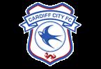 Логотип ФК «Кардифф Сити» (Кардифф)