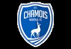 Логотип ФК «Ньор» (Ньор)