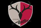 Логотип ФК «Касима Антлерс» (Касима)
